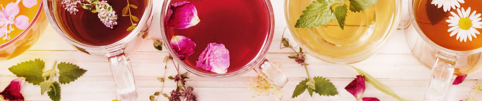 infusiones-tes